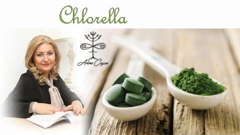 Articol chlorella Adina Cirjan ok